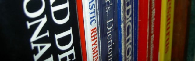 talen braillelleerling woordenboeken