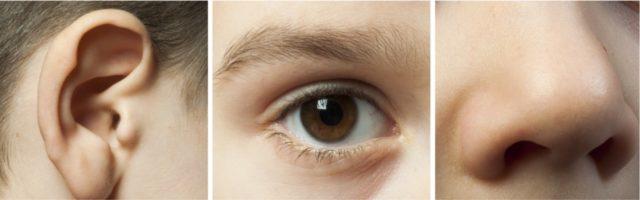foto van oor, oog en neus